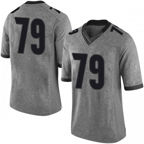 Men's Nike Isaiah Wilson Georgia Bulldogs Limited Gray Football College Jersey